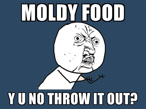 Moldy Food Joke