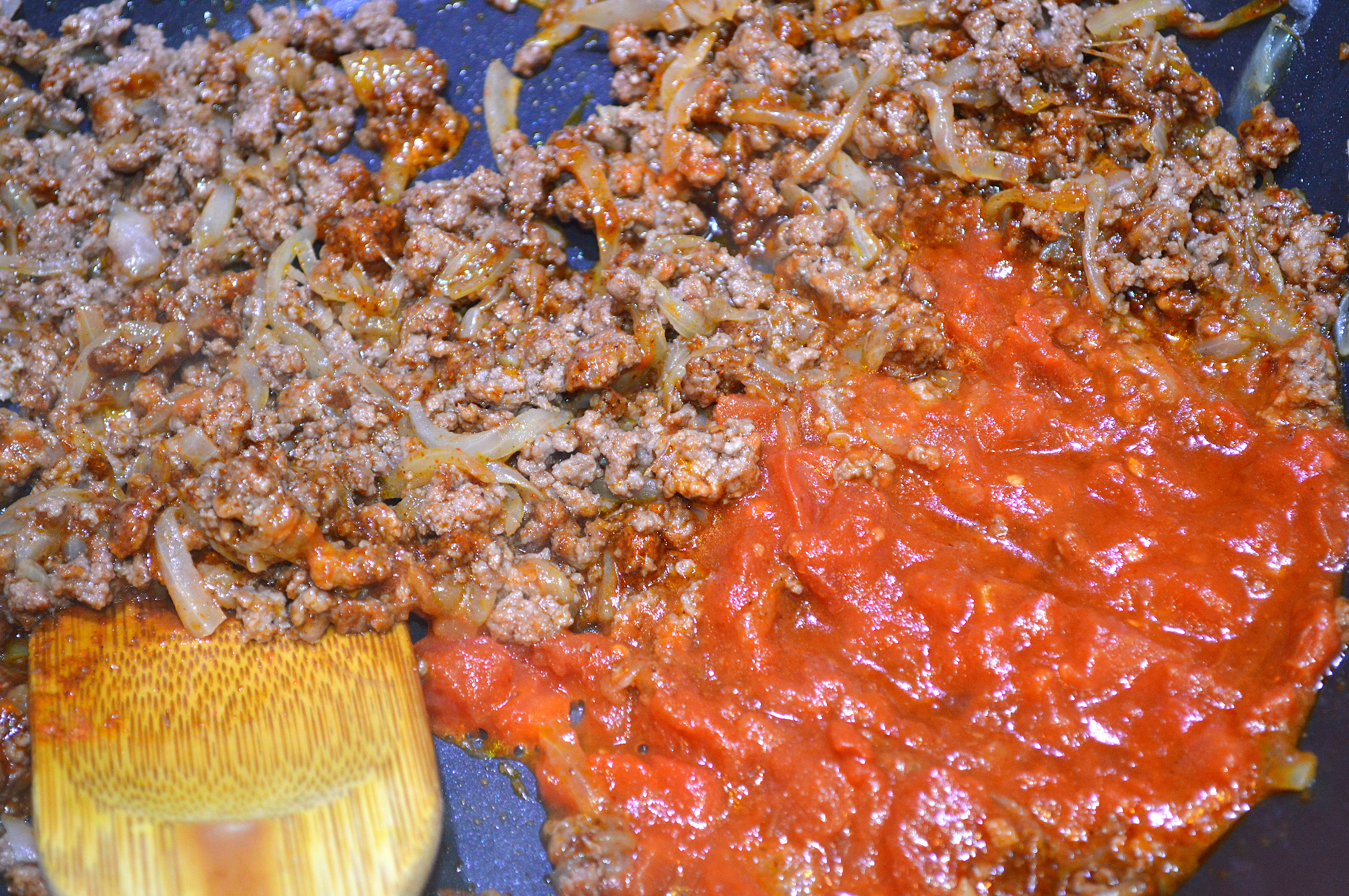 Browned ground beef w:sliced onions and Zesty tomato sauce